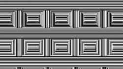 En esta imagen hay 16 círculos, ¿capaz de
