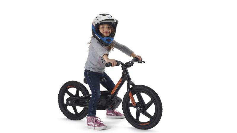 Harley-Davidson acquires maker of e-bikes for kids ... b0f20a96f