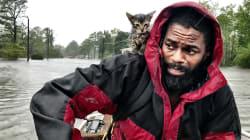 Cette photo d'un homme et son chat sauvés de l'ouragan Florence émeut les
