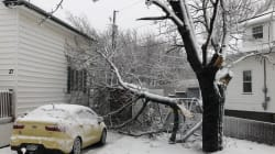 Severe Storm Wreaks Havoc Through The