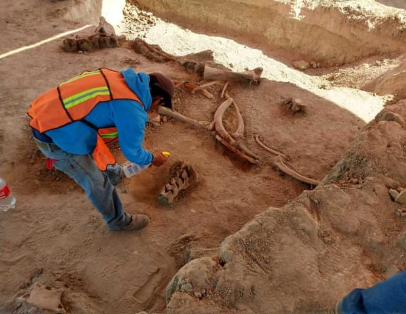 Archaeologists make stunning discovery