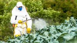 Regulamentação de agrotóxicos: O Brasil na contramão do