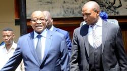 Hawks Probe Supra's R1.5m Cattle 'Gift' To Zuma In Nkandla --