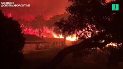 Les images du gigantesque incendie qui encercle Monchique au