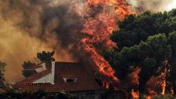 Des incendies font au moins 74 morts en