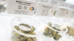 La marihuana medicinal no es apta para el canal del Super