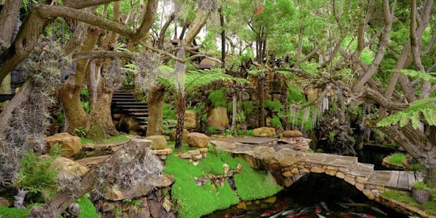 Hout Bay 39 S Magical R65 Million Treehouse Up For Auction