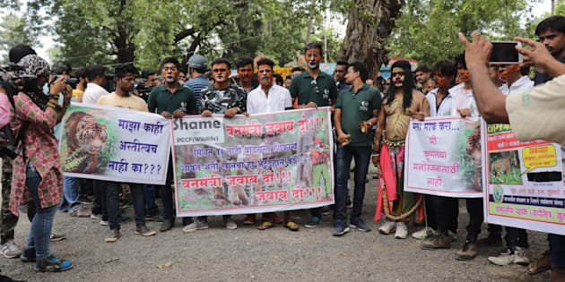 Wildlife activists protest in Nagpur against the forest department's move to rope in hunter Khan to track Avni.