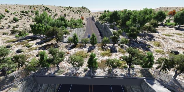 Ilustración digital que muestra como podría verse un paso de fauna superior en un ecosistema árido del noroeste de México.