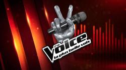 Et le gagnant de The Voice 2017