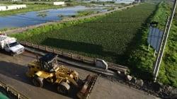 Más de mil viviendas afectadas por desbordamiento de Río Lerma en