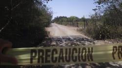 Cruda realidad; aparece otra fosa clandestina en Veracruz con más de 500