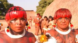 Evento em SP reúne lideranças indígenas, artistas e pesquisadores para discutir teatro e