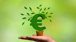 Bancos vs. medioambiente: ¿cómo es la banca