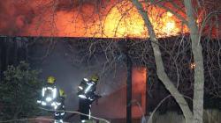 Incendie au zoo de