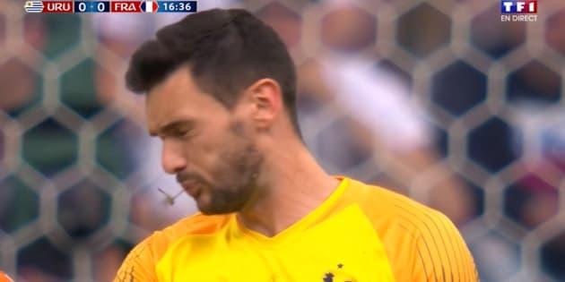 Match France - Uruguay: Cette libellule a parfaitement cadré la bouche d'Hugo Lloris