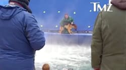 Leaked Video From 'A Dog's Purpose' Set Calls Film's Treatment Of Animals Into