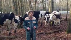 Cet agriculteur fait tout pour le bien-être de ses vaches et il veut que vous le