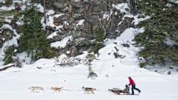 5 Canadian Winter Adventures Best Experienced In