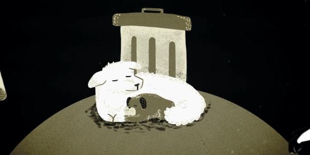 La iniciativa Los Invisibles busca que nuestras mascotas tengan un día para honrarlos.