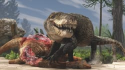 Découvertes autour d'un prédateur hors-norme mi-T-Rex