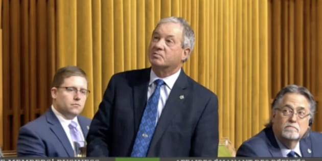 Conservative MP Ron Liepert addresses the House of Commons on Feb. 4, 2019.