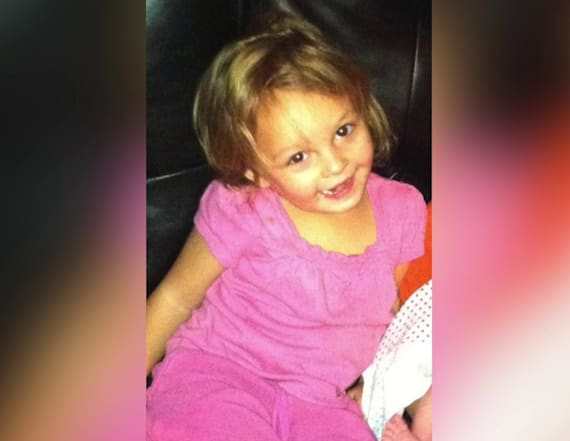 Dog mauls 3-year-old girl to death