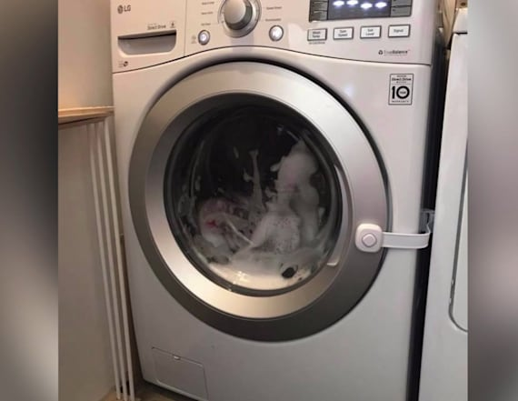 Girl locks herself inside washer filling with water