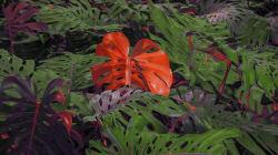 Vous n'avez jamais vu de plantes comme celles imaginées par cet