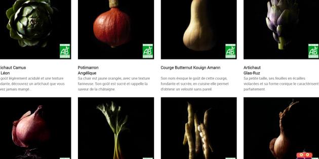 """Carrefour se lance dans la vente de légumes issus de semences paysannes """"interdites"""""""
