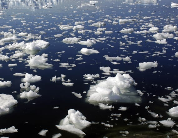 Study makes damning find about Arctic sea ice