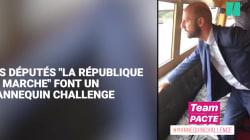 Ces députés LREM font le Mannequin Challenge (et l'opposition s'est empressée de les