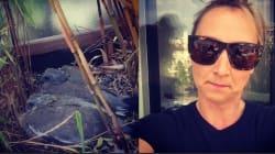 Audrey Lamy élève des pigeons et c'est toute une
