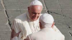 Il ramoscello d'ulivo di Bergoglio a