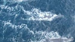 Près de 90% des océans de la planète sont en très mauvais