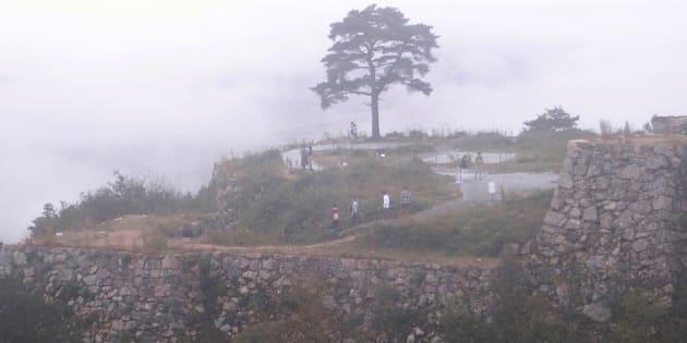 竹田城跡の「一本松」(2014年10月10日撮影)