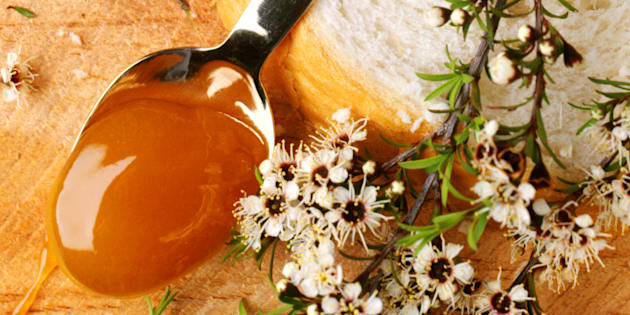 Manuka honey is great spread on bread, but it's also a bacteria-fighting salve.