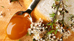 Love NZ Manuka Honey? Cheap Aussie Honey Has Same Medical