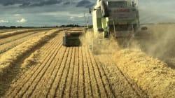 Una nueva Política Agraria para la Europa de los