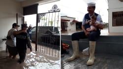 Los rescates y la destrucción tras las intensas lluvias en Sinaloa y