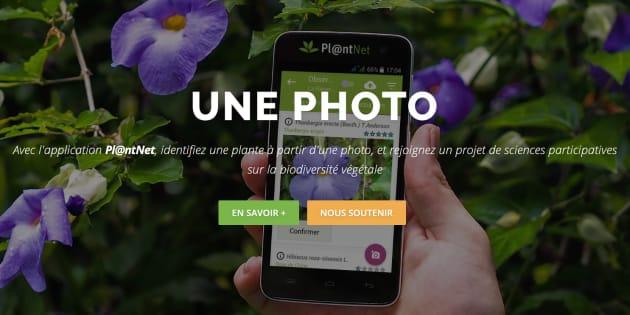 Pour la biodiversité, Nicolas Hulot veut un Shazam des plantes... qui existe déjà
