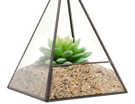 13 creative ways to display your plants indoor