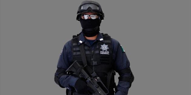 """""""Salvaguardar la vida, la integridad, la seguridad y los derechos de las personas, así como preservar las libertades, el orden y la paz públicos"""", uno de los objetivos de la Policía Federal, dependiente de la Procuraduría General de la República."""