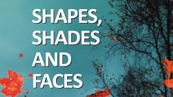 Extract: 'Shapes, Shades And