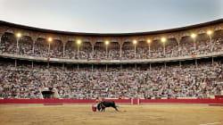 Iglesias propone un referéndum en España para decidir sobre los toros. ¿Tú qué dices? Vota en nuestra