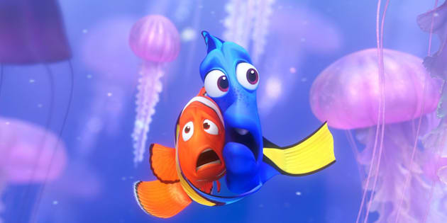 """The """"Finding Nemo"""" effect is real, but can researchers save Dory?"""