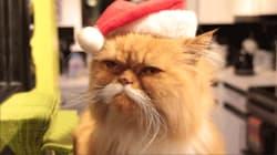 Noël vous fait stresser? Vous n'êtes pas le