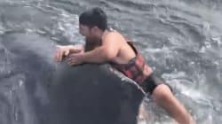 ロープに絡まり動けないクジラ、漁師が背中に飛び乗り救出
