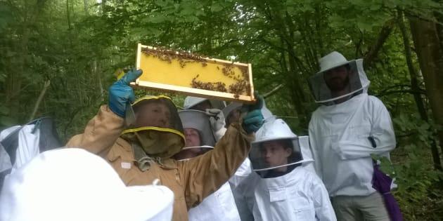 Je suis apiculteur et je vis de ce métier, mais la pollution tue mes abeilles et menace mon travail;