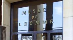 BLOG - Pour l'égalité, nous demandons de renommer le musée de l'Homme en musée de